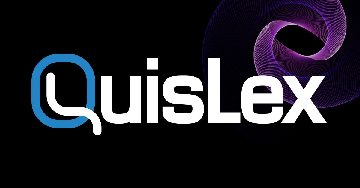 QUISLEX INC logo